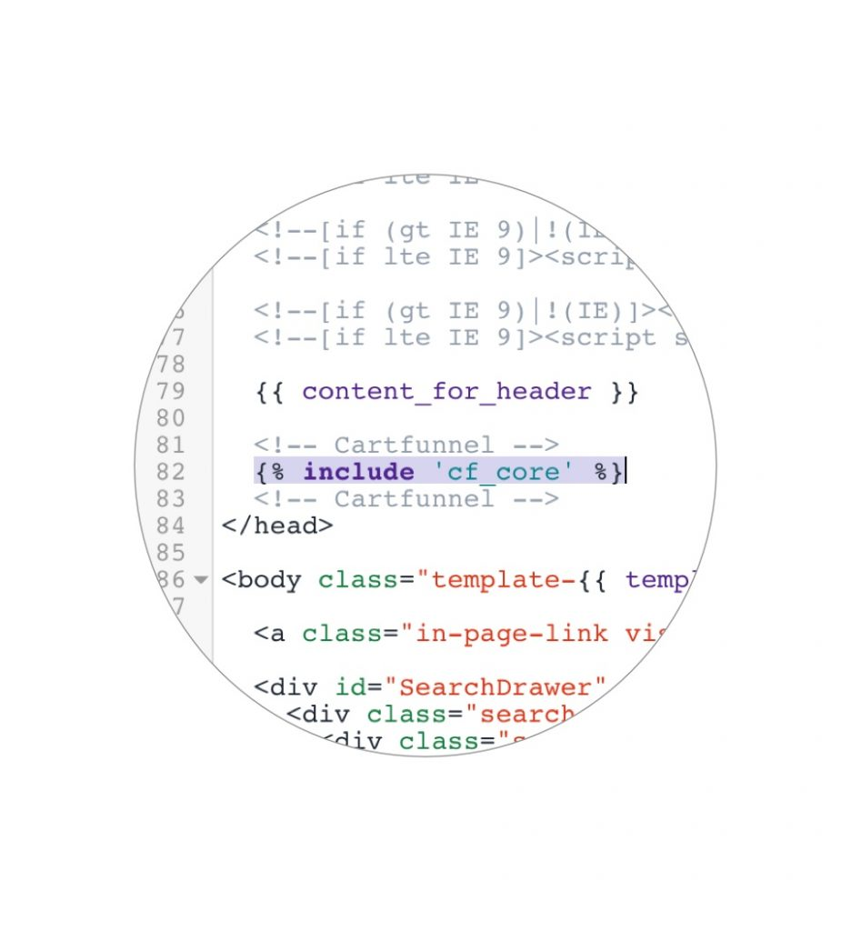 Install code snippet